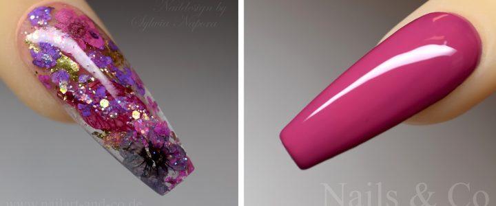 Blumige Spätsommer Träume – mit Dry Flower Nail Art